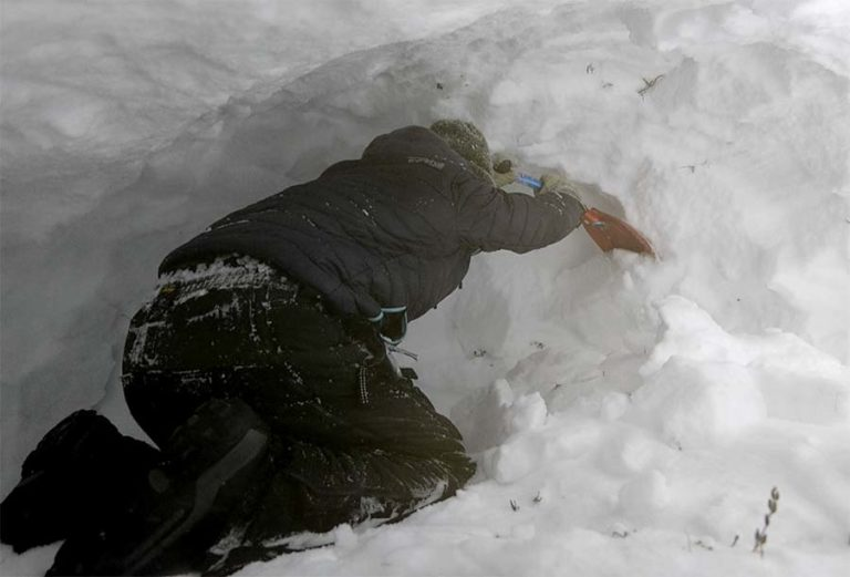 Carving out the snow shelter